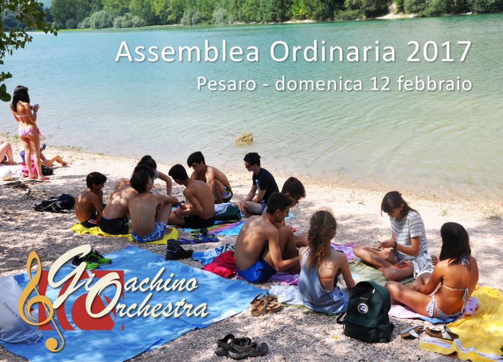 assemblea 2017